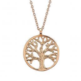 Ağaç Sembolü Altın Kolye